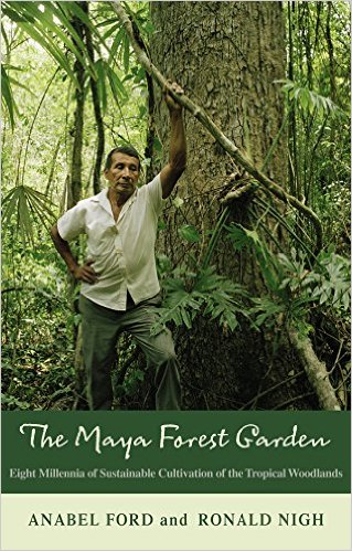 the-mayan-forest-book-cover